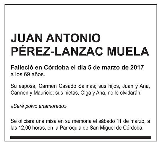 Juan Antonio Pérez-Lanzac Muela