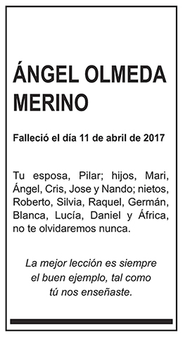 Ángel Olmeda Merino